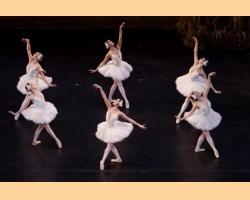 Η Λίμνη των Κύκνων: Το πνευματικό κλασικό μπαλέτο - Η ερμηνεία των ρόλων Οντέτ και Οντίλ