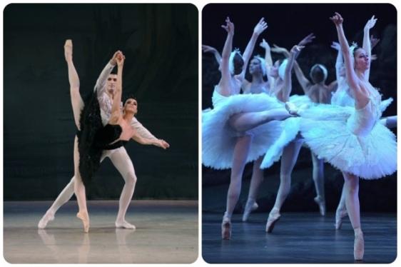 Λίμνη των Κύκνων: Όσα αξίζει να γνωρίζετε για το αριστουργηματικό μπαλέτο του Τσαϊκόφσκι