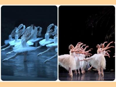 "Corps de ballet: Τα χαρακτηριστικά που καθιστούν το ""σώμα του μπαλέτου"" τόσο σημαντικό"