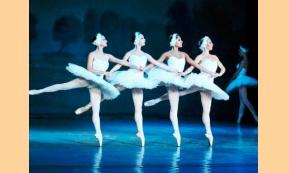 Swan Lake: Τα μυστικά πίσω από το πιο όμορφο μπαλέτο στον κόσμο