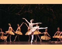 Η Ωραία Κοιμωμένη: Η μαγεία της υπομονής - Μια μπαλαρίνα μιλάει για τον ρόλο της στο μπαλέτο
