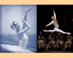 Ο Μαύρος Κύκνος: Γκαλά Μπαλέτου με κορυφαίους χορευτές των Θεάτρων Bolshoi και Mariinsky - Έξτρα Παράσταση